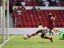 Brighton v Nottingham Forest Tips – Seagulls look tough to beat, but value elsewhere